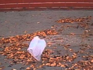 Blowing bag from American Beauty